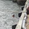 寒い中のダイバーによる救助訓練④