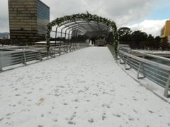 雪の街中 ⑧