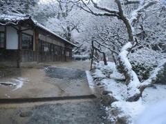 太宰府天開稲荷と雪 ②