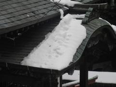 雪の積もった福岡県内④