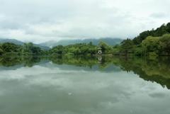 梅雨時三島池