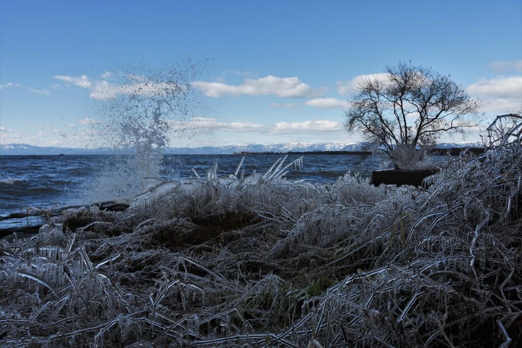 しぶき氷のある風景 ~琵琶湖~