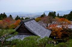 秋の記憶2019 Ⅴ ~百済寺からの展望~