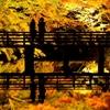晩秋のカップル