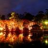 晩秋の水辺