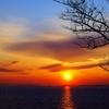 夕刻の冬空