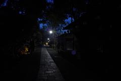 東京の暗がり