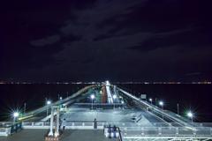 夜の水引(FOV)