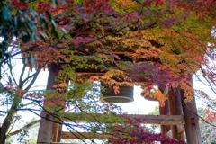 秋に包まれる鐘楼