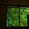窓の向こうは世界遺産