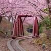 修飾されたトンネル