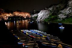 千鳥ヶ淵Night