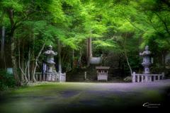 新緑の大矢田神社 Ⅳ
