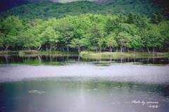 知床 一湖 Ⅱ