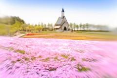 春色の高原 16