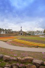高原の春彩 1