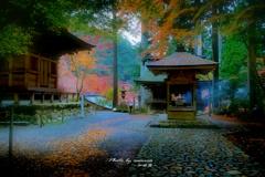 晩秋の古寺