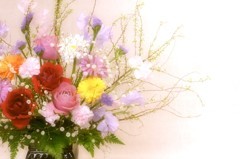 My wife's flower arrangement  ~春の予感~
