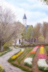 春色の高原 7