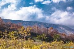 秋色に染まる たしろ高原 3
