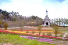 春色の高原 1