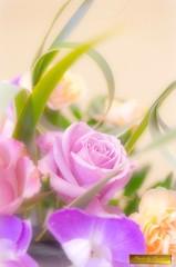 春の夢 2