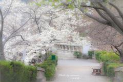 春の明治村 4