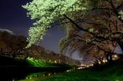 華やぎの春夜 2