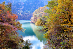 彩りの湖畔