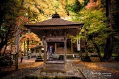 晩秋の横蔵寺 7