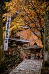 晩秋の横蔵寺 6