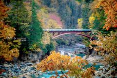 秋色に染まる渓谷
