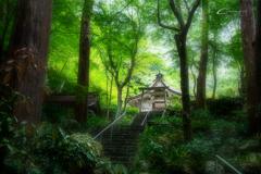 新緑の大矢田神社 Ⅶ