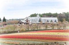 春色の高原 6