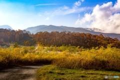 秋色に染まる たしろ高原 2