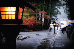 雨の小國神社 1