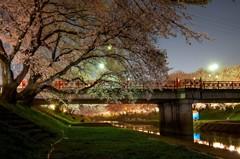 華やぎの春夜 1