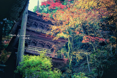 晩秋の山寺