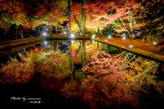 華やぎの秋の夜