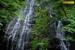 新緑の龍双ヶ滝 Ⅱ