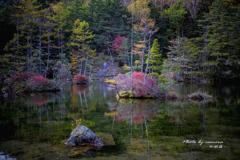 静寂の明神池