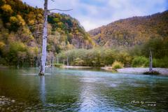 錦秋の大正池