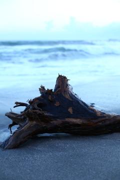 砂浜のオブジェ