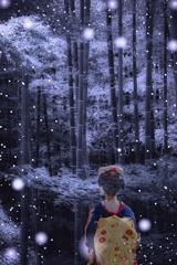 雪の降る夜には。。