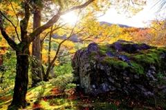 宝厳院の秋