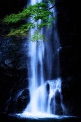 初秋の箕面滝
