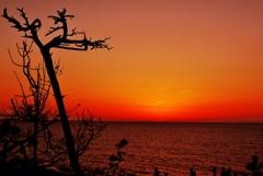 夕焼 日本海