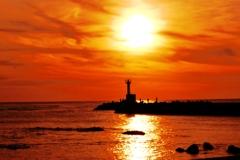 海の紅葉  日本海