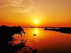 初夏の日本海・・・洛陽