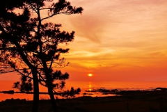 夕景 見越しの松   日本海は能登百浦海岸